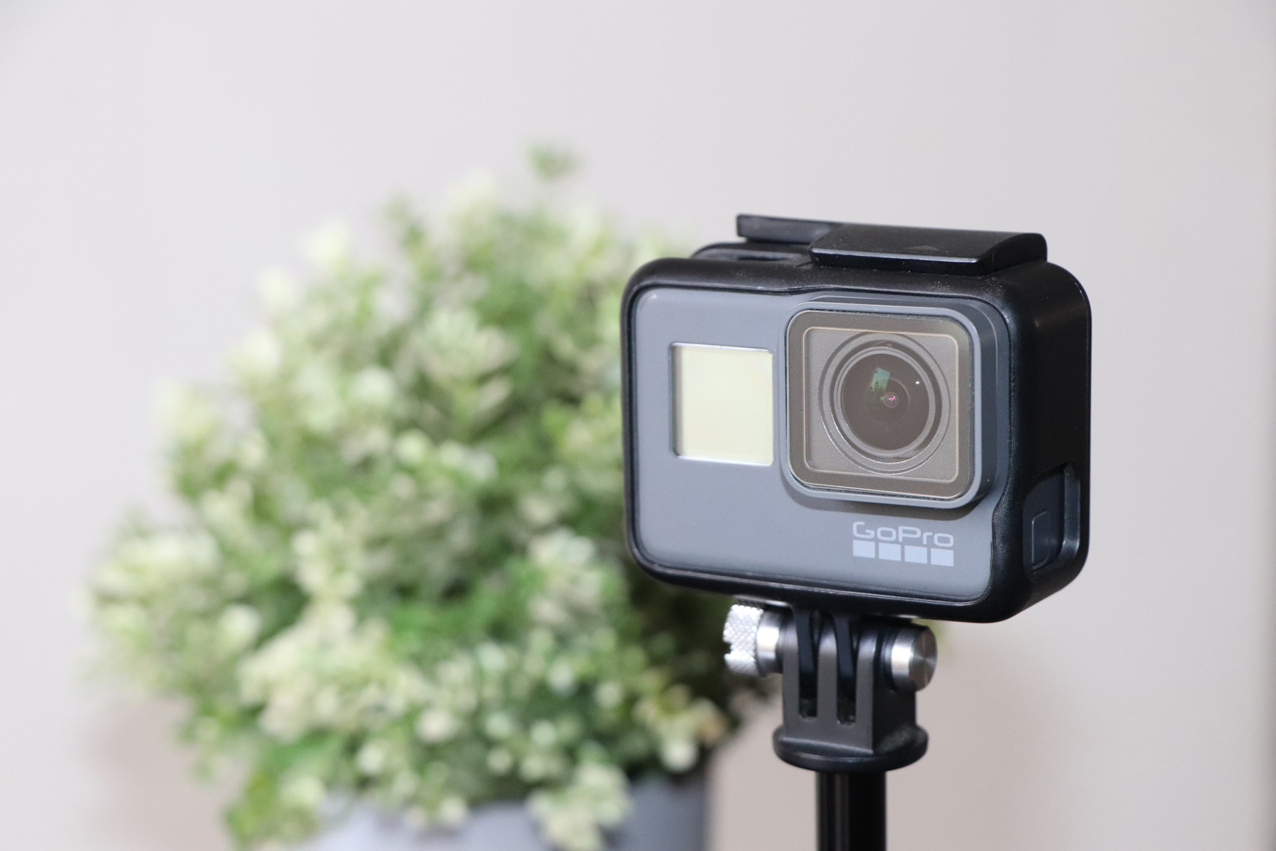 A GoPro set up in a room with a flower arrangement behind